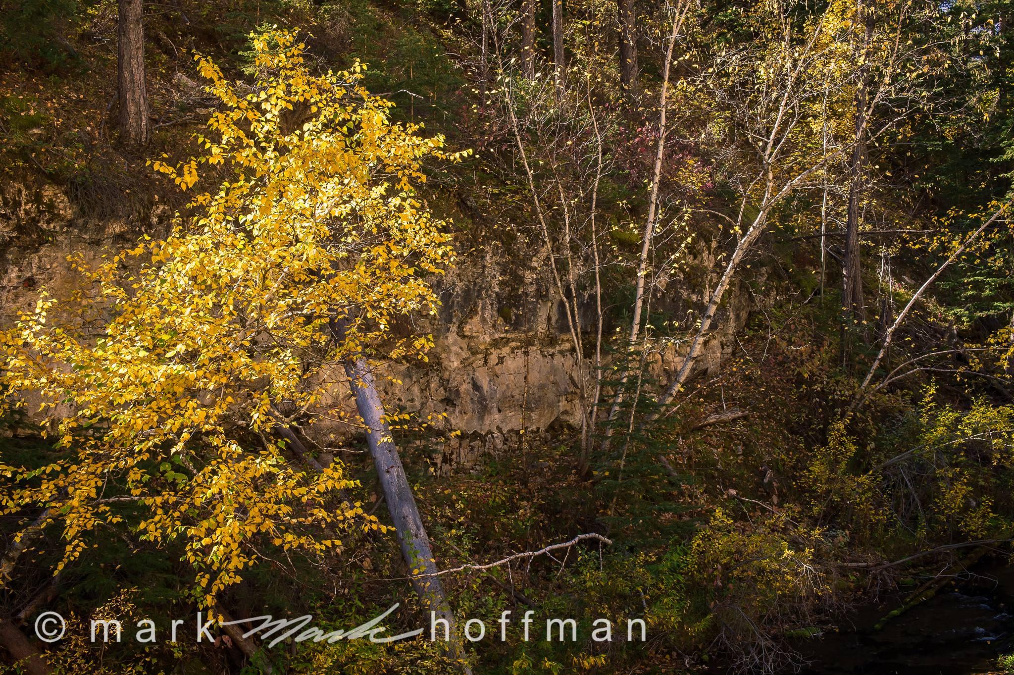Mark_Hoffman_photophart_20150925_0119_PFX_cap1_var1.jpg
