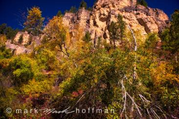 Mark_Hoffman_photophart_20150925_0010_v1_PFX_cap1_var1.jpg