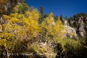 Spearfish Canyon 15