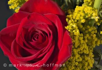Mark_Hoffman_2014_06_06_18_10_46_ZS_retouc_PSD_cap1_var1.jpg
