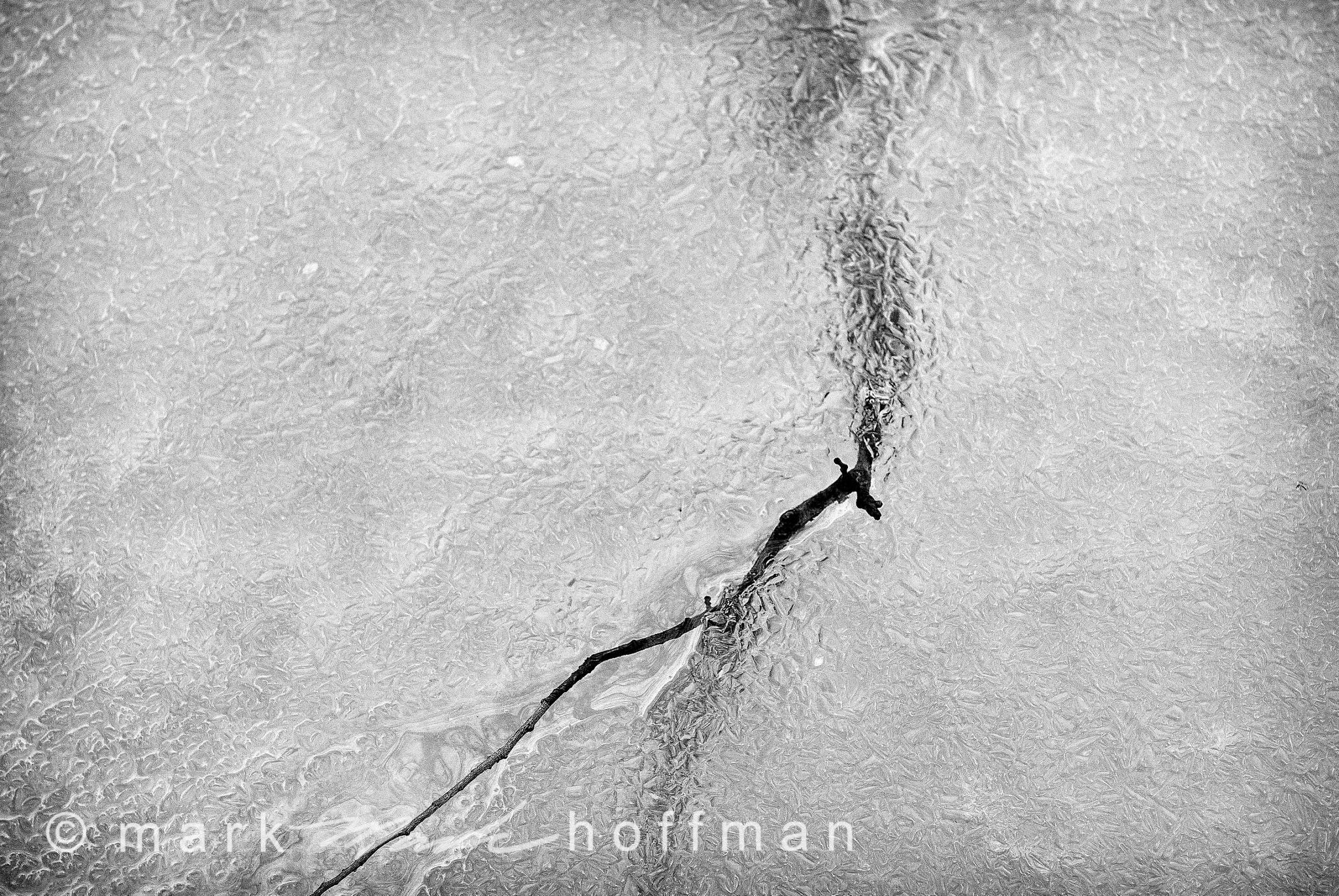 Mark_Hoffman_ND25738_Edit_cap1_var1.jpg