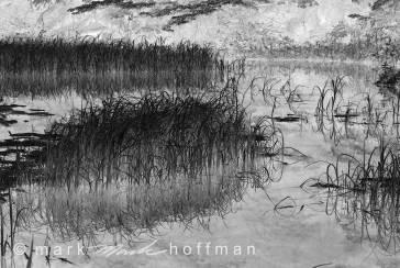 Mark_Hoffman_ND24901-Edit-2_cap1_var1.jpg