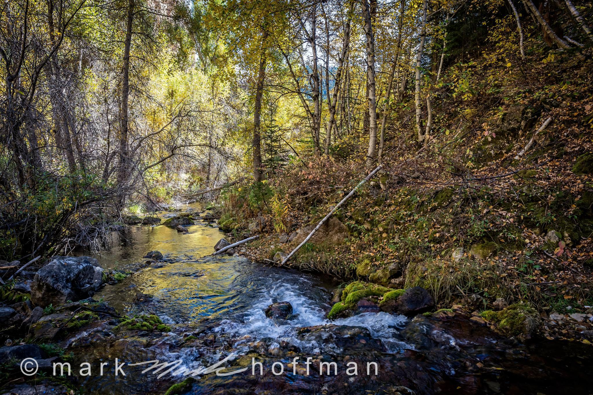 Mark_Hoffman_photophart_20150925_0031-HDR_PFX_cap1_var1.jpg